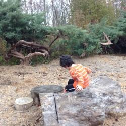 Exploring natural materials